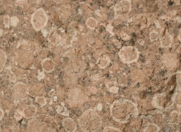 MGB PR-14389 Granit rapakivi de Finlàndia ©MCNB