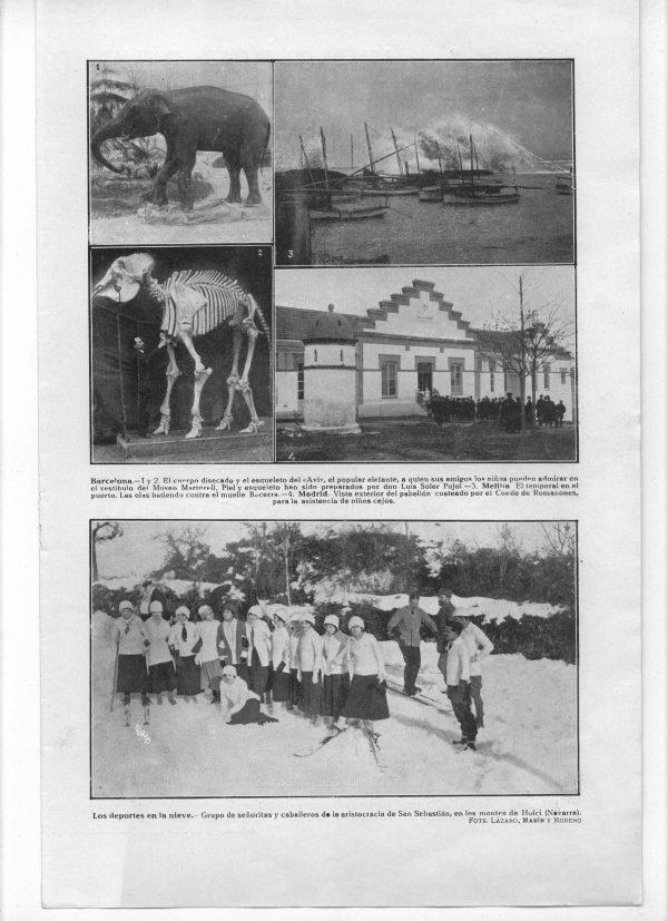 Publicació al diari Actualidad. Apareixen dues fotos, una de l'elefant naturalitzat i una de l'esquelet amb Lluís soler Pujol