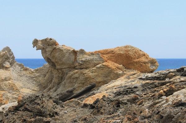 Detall dels esquistos (roques fosques) amb filons de pegmatites (roques clares)  ©Grey Geezer