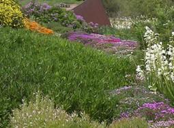 Capcalera reconeixement tripadvisor Jardi botanic-blog