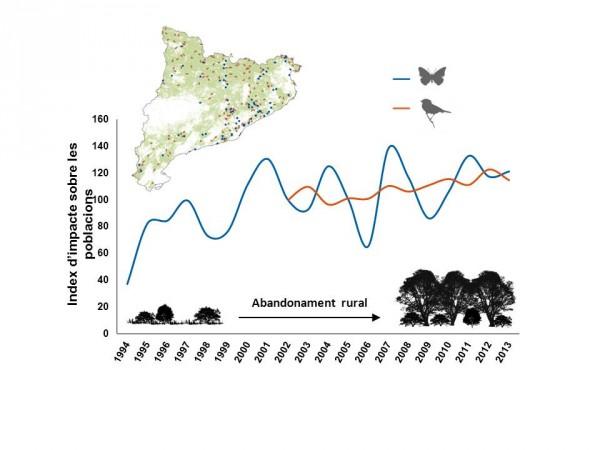Figura 1. Aquest gràfic mostra l'indicador de l'impacte de l'abandonament terra rural en les poblacions de papallones i ocells a Catalunya (Nordoest de la conca de la Mediterrània) en funció de la seva ecologia i tendències poblacionals. Font: CBMS iSOCC.