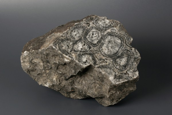 Granit orbicular de Finlàndia (MGB PR-14386)