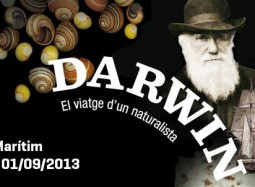 darwin destacat